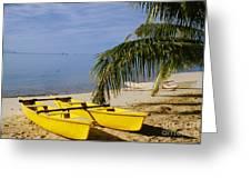 French Polynesia, Rangiro Greeting Card