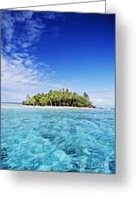 French Polynesian Island Greeting Card