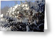Fresc Snow Greeting Card