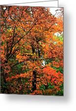 Fresco Autumn Diptych Left Greeting Card