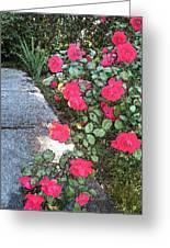 Fresco Roses Greeting Card