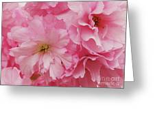Fresh Blooms Greeting Card