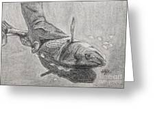 Fresh Catch Greeting Card