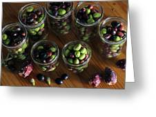 Fresh Harvested Olives And Tunas Greeting Card