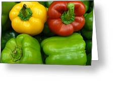 Fresh Peppers II Greeting Card