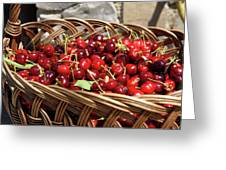 Fresh Picked Cherries In A Wicker Basket In Dolnje Cerovo In The Greeting Card