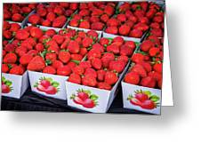 Fresh Picked Strawberries Greeting Card