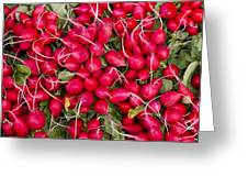 Fresh Red Radishes Greeting Card