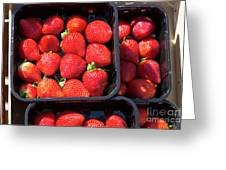 Fresh Ripe Strawberries In Plastic Boxes Greeting Card
