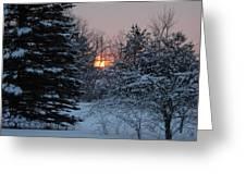 Fresh Snow At Sunrise Greeting Card
