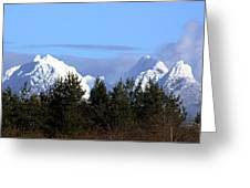Fresh Snow On Golden Ears Greeting Card