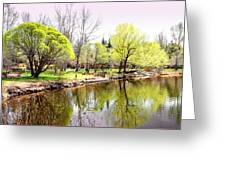 Fresh Spring Trees Greeting Card