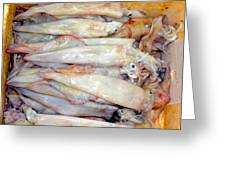 Fresh Squid On A Market Stall Greeting Card