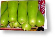 Fresh Vegetable Gourd Greeting Card