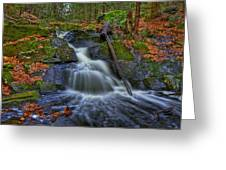 Fresh Water Greeting Card