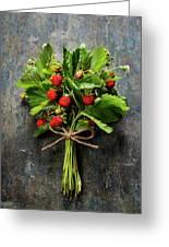 fresh Wild strawberries on wooden background  Greeting Card