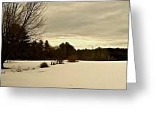 Freshly Fallen Snow Greeting Card