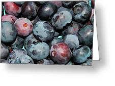 Freshly Picked Blueberries Greeting Card