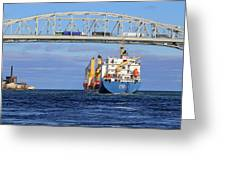 Frieda And Blue Water Bridge Greeting Card
