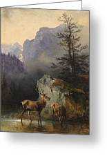 Friedrich Gauermann  Red Deer At The Watering Hole Greeting Card