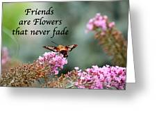 Friends Are Flowers That Never Fade Greeting Card