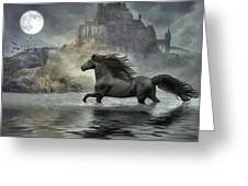 Friesian Fantasy Revisited Greeting Card