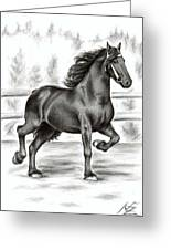 Friesian Horse Greeting Card