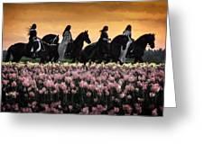 Friesians At Sunset Greeting Card