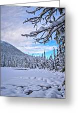 Frigid Beauty Greeting Card