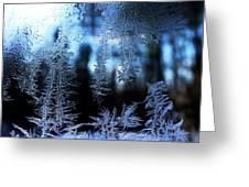 Frigid Blue Morning Greeting Card