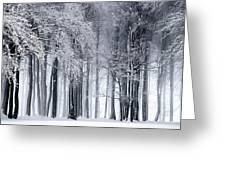 Frigid Forest Greeting Card