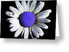 Fringe - Blue Flower Greeting Card