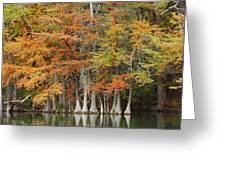 Frio River #5 2am-27571 Greeting Card