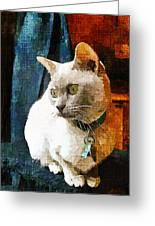 Fritz The Cat Greeting Card
