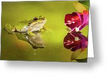 Frog And Fuchsia With Reflections Greeting Card