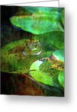 Frog And Lily Pad 3076 Idp_2 Greeting Card