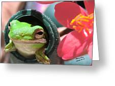 Frog At Selby Greeting Card