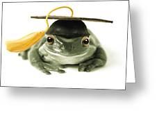 Frog Graduate Greeting Card
