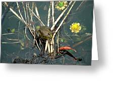 Frog On A Stick Greeting Card