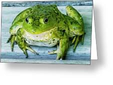 Frog Portrait Greeting Card