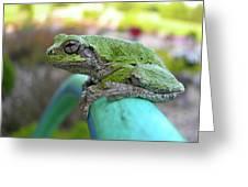 Frog Watering Plants Greeting Card