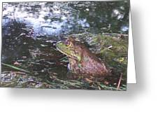 Froggie II Greeting Card