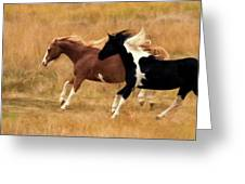 Frolicking Horses Greeting Card
