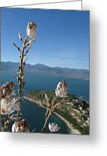 From Atop Nafplion Greeting Card