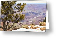From Desert View Greeting Card