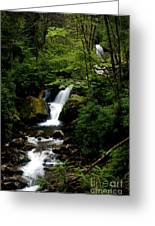 From Out Of The Smoky Mountains Greeting Card