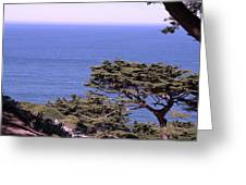 From The Cliff Of Lands' End 02 Greeting Card
