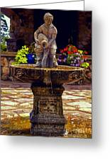 From The Fountain Greeting Card