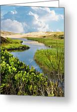 From The Sand Dunes To The Beach Greeting Card