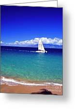 Maui Hawaii Frommer's 2000 Maui Cover Greeting Card